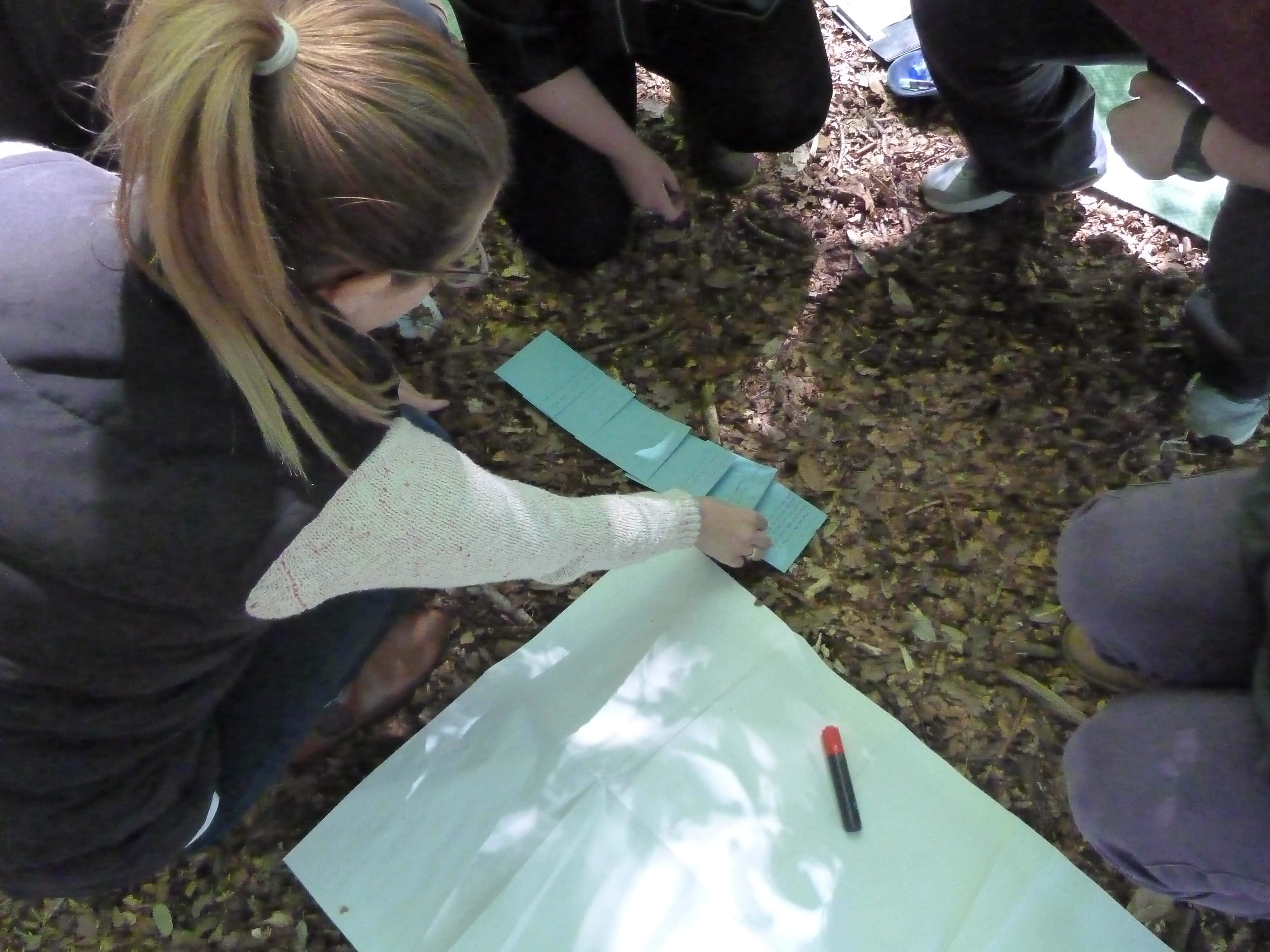 editing poems outdoors (literacy)