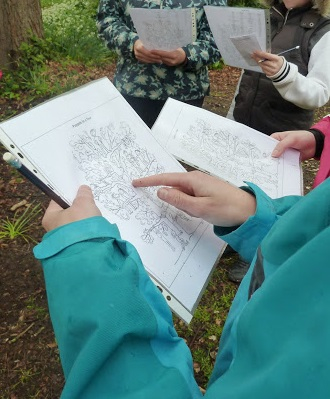 evaluating outdoor literacy